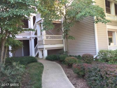 Centreville Condo For Sale: 14321 Climbing Rose Way #202