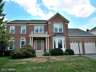 Centreville Single Family Home For Sale: 5228 Fernbrook Drive