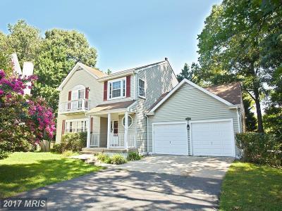 Centreville Single Family Home For Sale: 5223 Woodleaf Court