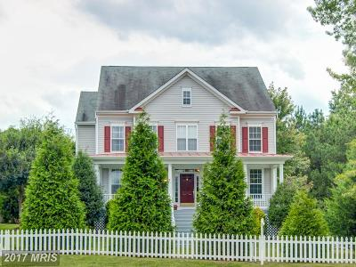 Herndon Single Family Home For Sale: 491 Spring Street