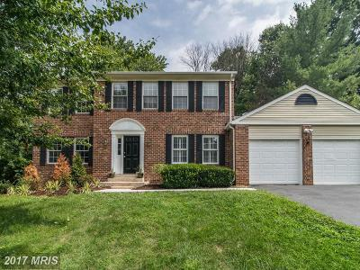 Herndon Single Family Home For Sale: 12012 Sugarland Valley Drive