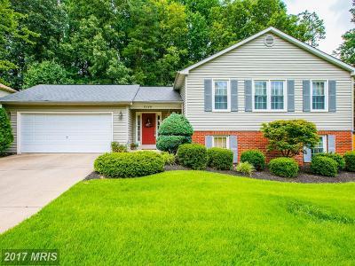 Burke Single Family Home For Sale: 6549 Koziara Drive
