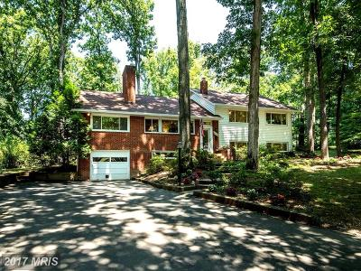 Annandale Single Family Home For Sale: 4124 Mason Ridge Drive
