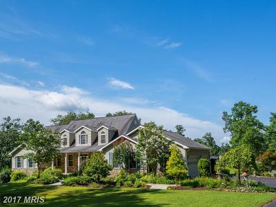 Fairfax Single Family Home For Sale: 11425 Popes Head Road