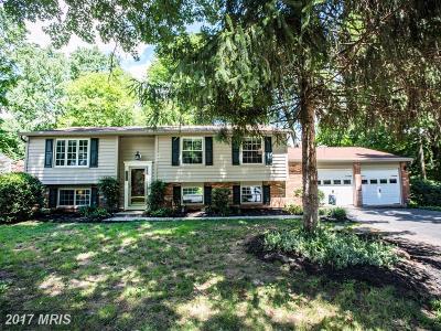 Burke Single Family Home For Sale: 9302 Jackson Street