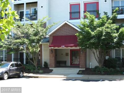 McLean Rental For Rent: 1530 Spring Gate Drive #9406