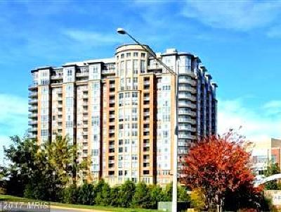 McLean Condo For Sale: 8220 Crestwood Heights Drive #404