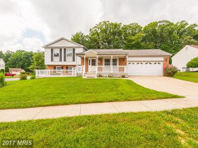 Burke Single Family Home For Sale: 6556 Koziara Drive
