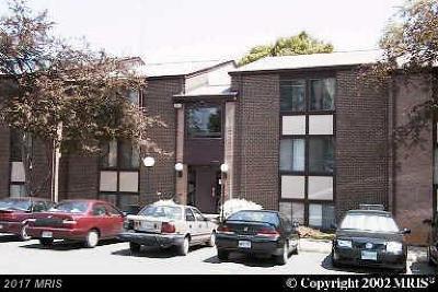 Fairfax Rental For Rent: 3115 Buccaneer Court #202