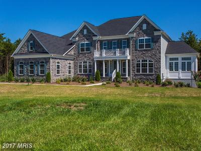Centreville Single Family Home For Sale: 16300 Sunset View Trail