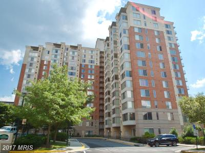 Vienna Condo For Sale: 2726 Gallows Road #917