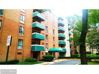 Falls Church Condo For Sale: 6141 Leesburg Pike #305