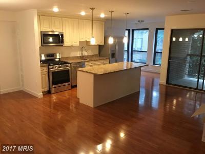 Reston Condo For Sale: 11232 Chestnut Grove Square #236