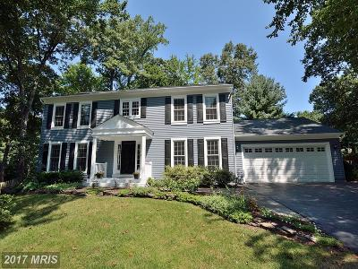 Herndon Single Family Home For Sale: 11560 Southington Lane