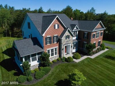 Centreville Single Family Home For Sale: 16456 Glory Creek Trail