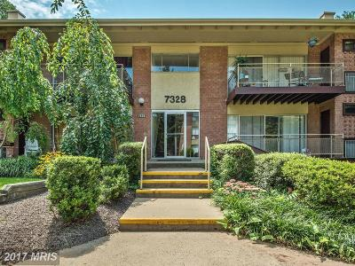 Falls Church Condo For Sale: 7328 Lee Highway #201