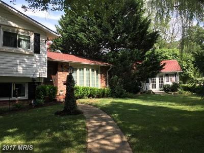 Annandale Single Family Home For Sale: 4399 Medford Drive