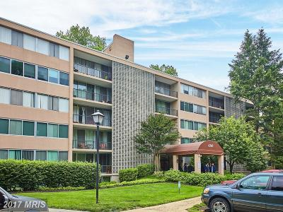Annandale Rental For Rent: 4360 Ivymount Court #24