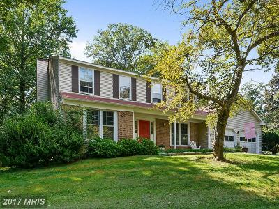 Great Falls Single Family Home For Sale: 11112 Loran Road