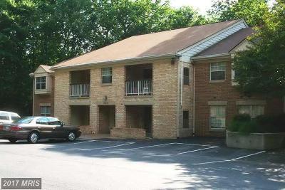 Burke Rental For Rent: 5918 Cove Landing Road #204