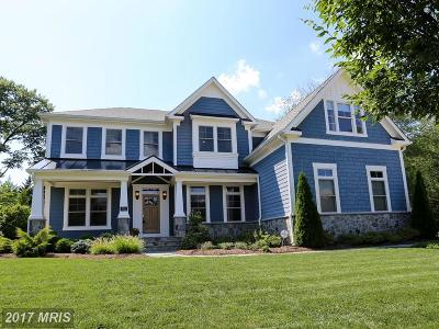 Vienna Single Family Home For Sale: 436 Lewis Street NW