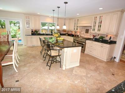 Reston, Herndon Single Family Home For Sale: 1428 Fishers Mill Court