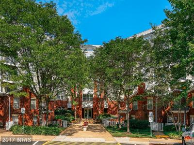 McLean Townhouse For Sale: 1625 International Drive #TH1