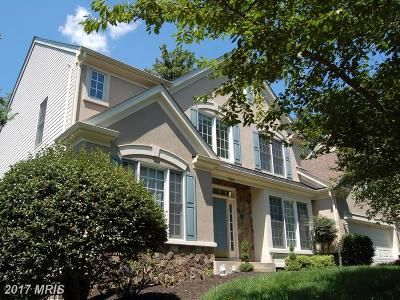 Chantilly Single Family Home For Sale: 13610 Smallwood Court