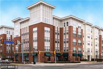 Fairfax Condo For Sale: 2655 Prosperity Avenue #245