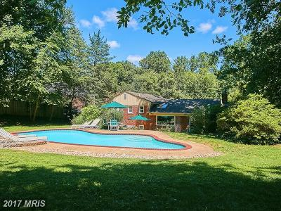 Falls Church Single Family Home For Sale: 6423 Walters Woods Drive