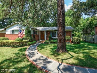 Falls Church Single Family Home For Sale: 7018 Vagabond Drive
