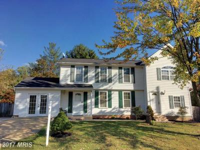 Centreville Single Family Home For Sale: 6103 Oday Drive