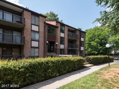 Fairfax Condo For Sale: 9708 Kingsbridge Drive #204