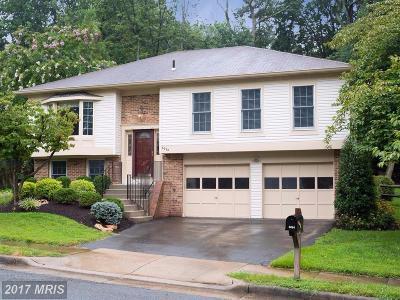 Burke Single Family Home For Sale: 6084 Burnside Landing Drive