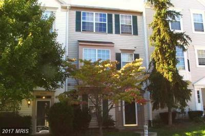 Centreville Rental For Rent: 6206 William Mosby Drive