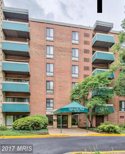 Falls Church Condo For Sale: 6147 Leesburg Pike #101