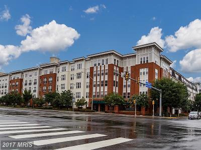 Fairfax Condo For Sale: 2655 Prosperity Avenue #236