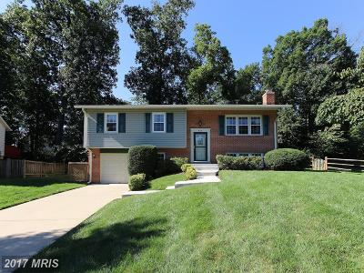 Herndon Single Family Home For Sale: 851 Longview Place