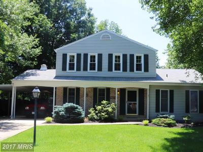 Centreville Single Family Home For Sale: 15003 Kamputa Drive