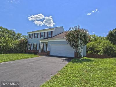 Centreville Single Family Home For Sale: 6883 Colonel Taylor Lane