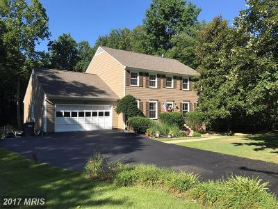 Mclean Single Family Home For Sale: 6887 Churchill Road