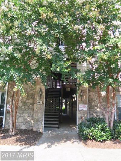 Centreville Rental For Rent: 13397 Connor Drive #K