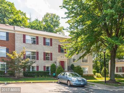 Falls Church VA Condo For Sale: $315,000