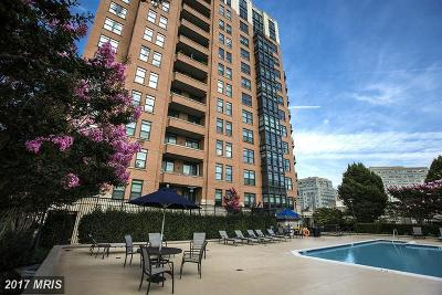 Reston Condo For Sale: 1830 Fountain Drive #605