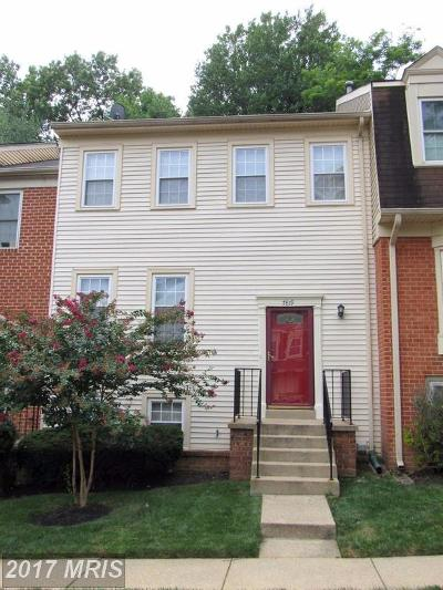 Annandale Townhouse For Sale: 7819 Butterfield Lane