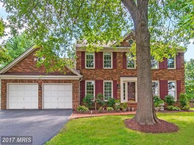 Herndon Single Family Home For Sale: 2661 Meadow Hall Drive