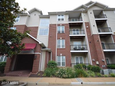 Mclean Rental For Rent: 1601 Spring Gate Drive #1115