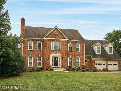 Reston, Herndon Single Family Home For Sale: 731 Old Hunt Way