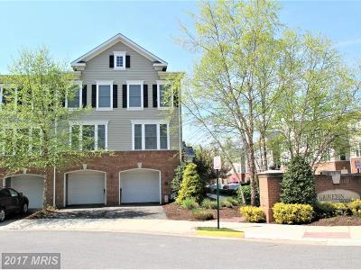 Alexandria Rental For Rent: 7100 Mason Grove Court #23