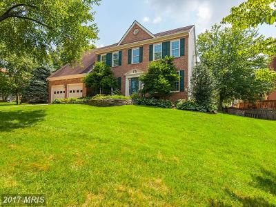 Herndon Single Family Home For Sale: 3008 Taylor Makenzye Court